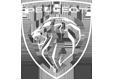 Logo Garage Vergeon